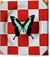 Green And Black Butterfly On Red Checker Plate Canvas Print
