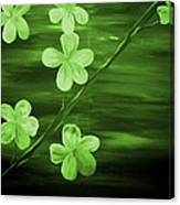 Green Cherry Blossom Canvas Print