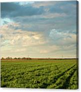 Green Field With Clouds Canvas Print