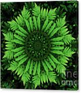 Green Forest Ferns Mandala - 2 Canvas Print
