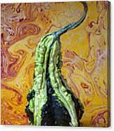 Green Gourd Canvas Print