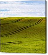 Green Hill Canvas Print