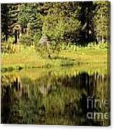 Green In Summit Lake Canvas Print