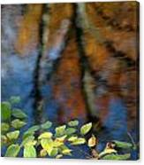 Green Leaves And Autumn Reflection Canvas Print