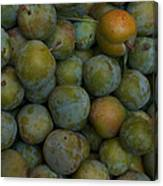 Green Plums Fill A Bin Outside A Local Canvas Print