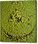 Green Smile Canvas Print