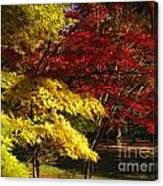 Green Yellow Red Canvas Print