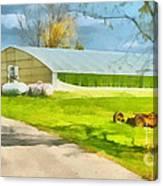 Greenhouses Canvas Print