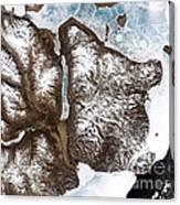 Greenland Sea Ice Canvas Print