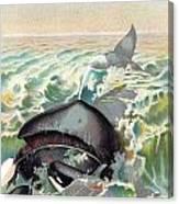 Greenland Whale Canvas Print