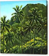 Greens Of Kahana Canvas Print