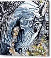 Grey Ghost Canvas Print