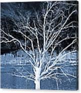 Grey Magical Tree Canvas Print