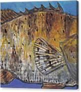 Grouper Canvas Print
