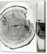 Growth Rings On A Tree From Tunguska Canvas Print