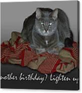 Grumpy Cat Birthday Card Canvas Print