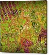 Grunge Background 4 Canvas Print