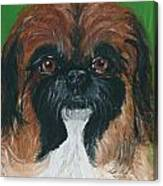 Gucci The Peke Canvas Print