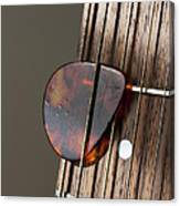 Guitar Neck Frets And Pick Canvas Print
