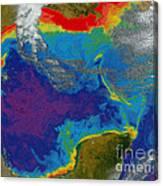Gulf Of Mexico Dead Zone Canvas Print