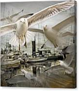 Gulls In The Harbor Canvas Print