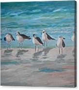 Gulls On Beach Canvas Print