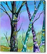 Gypsy Sky Canvas Print