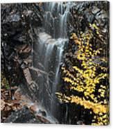 Hadlock Brook Falls Canvas Print