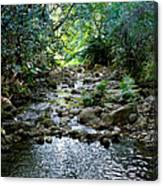 Haiku Stream Canvas Print