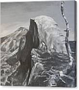 Half Dome Tree Canvas Print