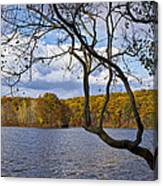 Hall Lake In Autumn No 0118 Canvas Print