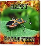Halloween Greeting Card - Box Elder Bug Canvas Print