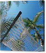 Hammock And Palm Tree, Great Barrier Canvas Print