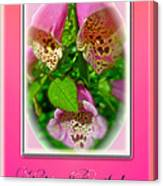 Happy Birthday Card - Foxgloves Canvas Print