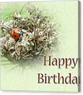 Happy Birthday Greeting Card - Ladybug On Dried Queen Anne's Lace Canvas Print