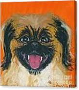 Happy Face Canvas Print