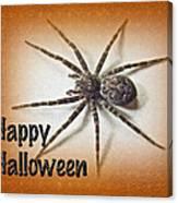 Happy Halloween Spider Greeting Card - Dolomedes Tenebrosus Canvas Print