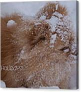 Happy Holidays Christmas Card Canvas Print