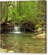 Happy Trail Falls Canvas Print