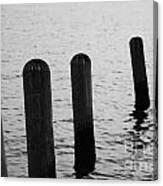 Harbor Ties Canvas Print