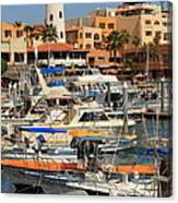 Harbor Waterfront In Cabo San Lucas Canvas Print