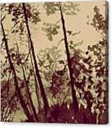 Harmony Ridge Canvas Print
