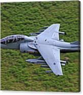 Harrier Low Level Canvas Print