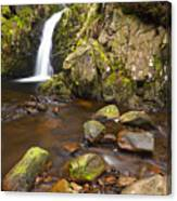 Harthope Linn, Harthope Valley, Northumberland National Park, Northumberland, England Canvas Print