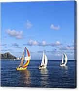 Hawaii Sailboats Canvas Print