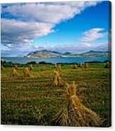 Hay Bales In A Field, Ireland Canvas Print