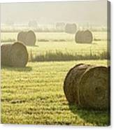 Hay Bales In Mist At Sunrise Canvas Print