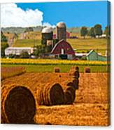 Hay Bales Leading To Barn Canvas Print