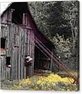 Hay Barn With Random Color Canvas Print