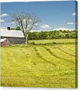 Hay Being Harvested Near Barn In Maine Canvas Print